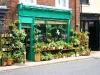bungay-florists