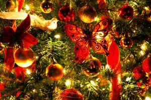 Bungay Christmas Fair 2014 (Sunday 7th December)